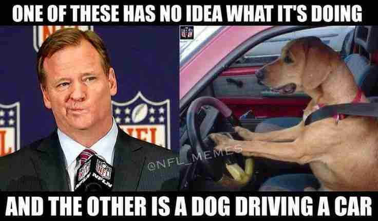 Top 10 Douchebags Roger Goodell